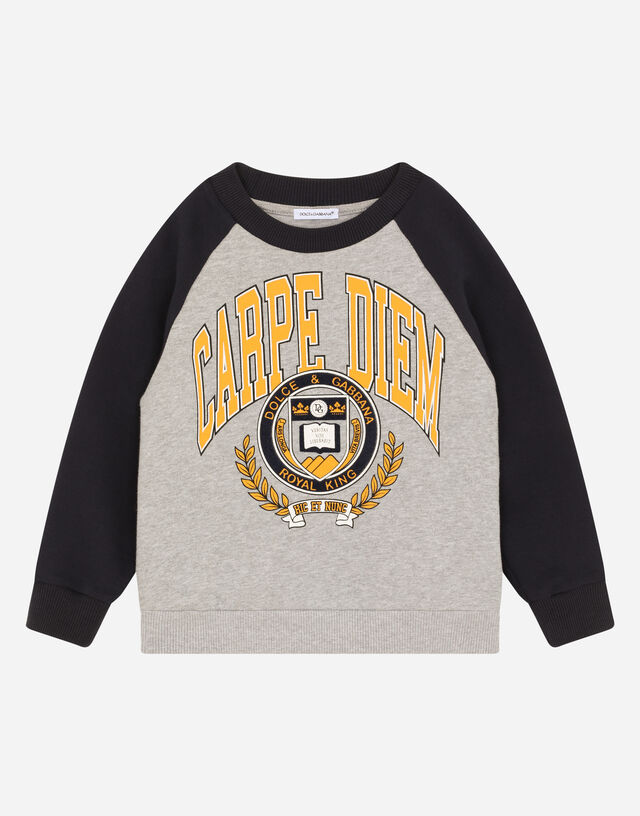 Round-neck jersey sweatshirt with iconic print in Multicolor