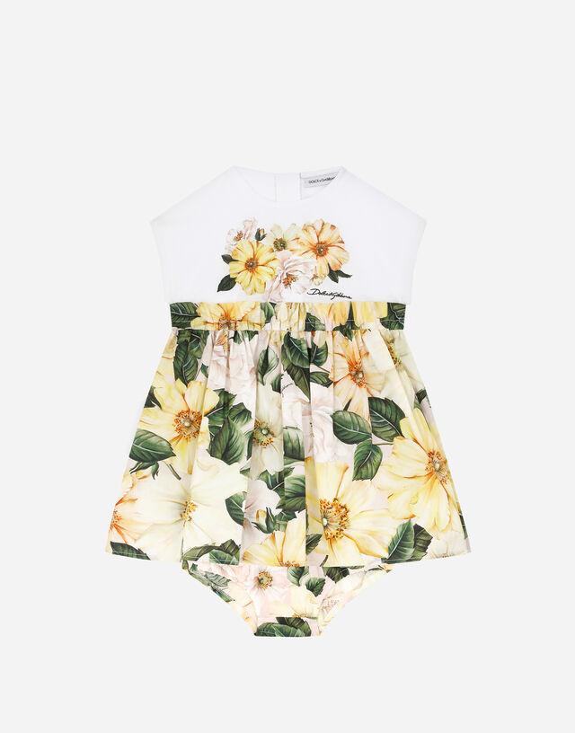 Camellia-print poplin and jersey dress in Multicolor